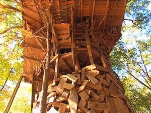 one 85 foot oak tree is supporting the entire structure that is actually built around that tree the tree house today is supported by 6 trees and includes - Biggest Treehouse In The World 2015